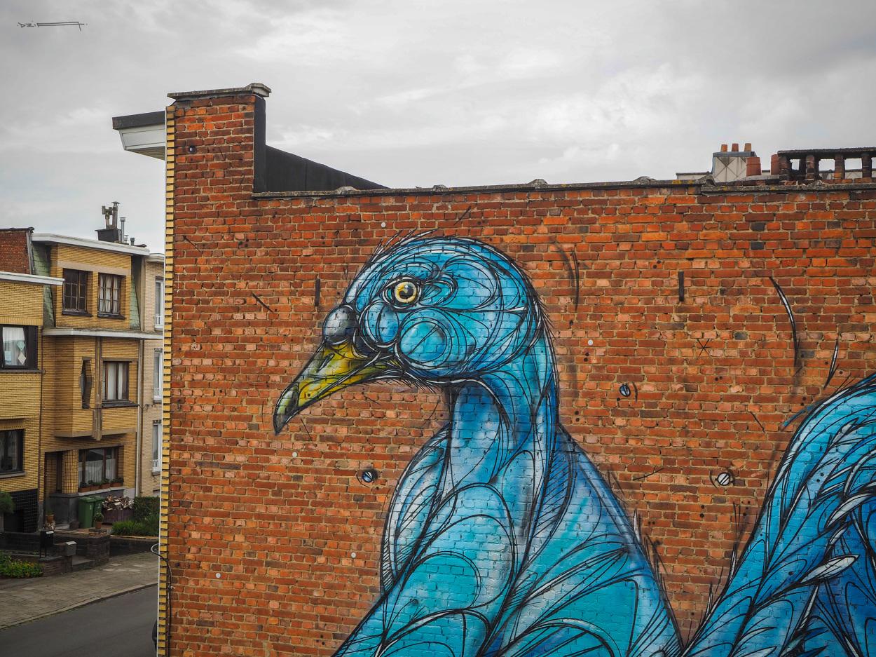 Grafitti art kopen - Grafitti Art Kopen 56